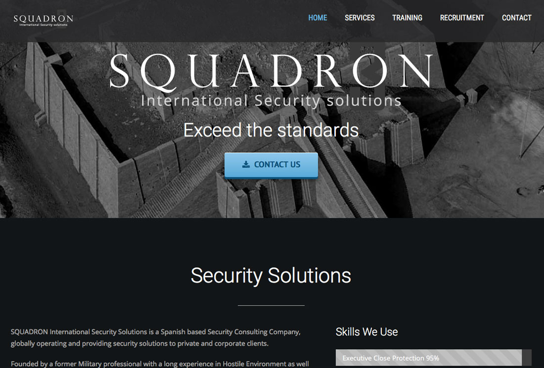 squadron-security-marbella-wordpress-website-design