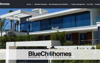 bluechilihomes-realestate-website-marbella
