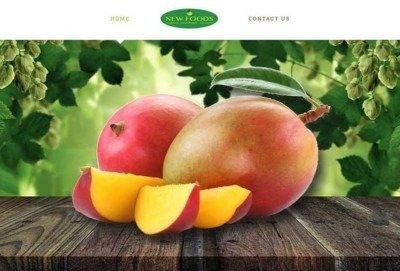 social-media-marketing-website-design-wordpress-disenoideas