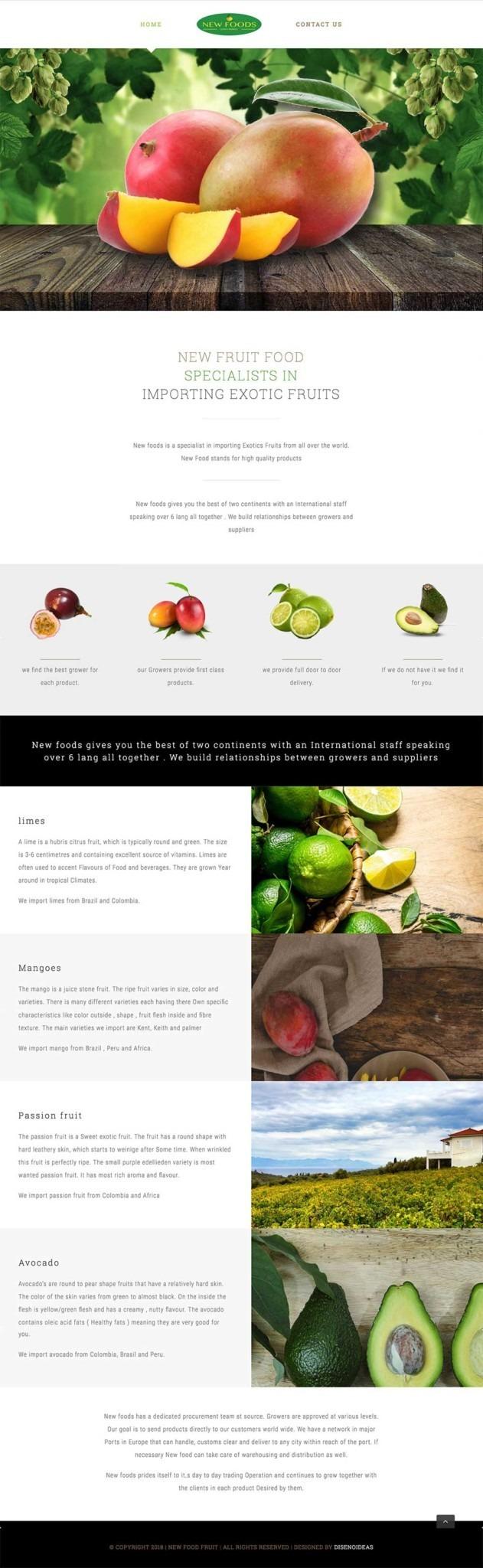 social-media-marketing-website-design-wordpress-marbella