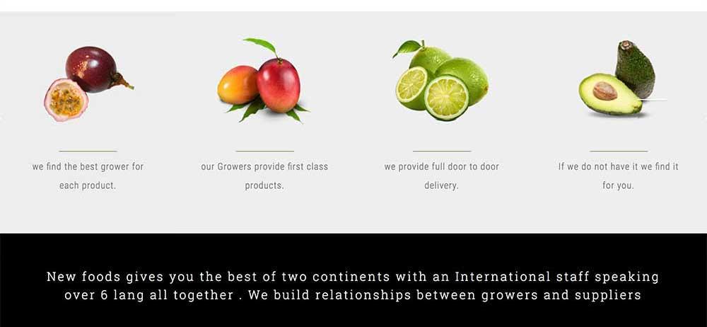 social-media-marketing-website-designers-wordpress-marbella